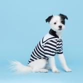 플로트 마린 셔츠 강아지옷 | 네이비
