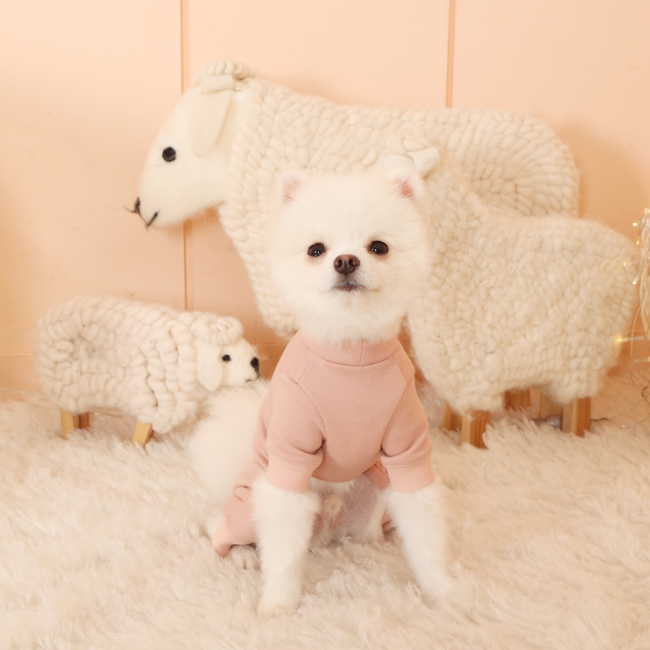 에덴숑 올인원 페일 핑크