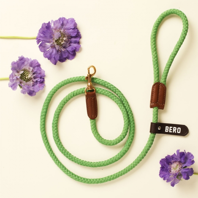 (ONE TONE) SMART LEASH_SPRING GRASS