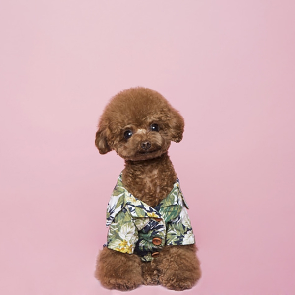 트로이스포인트 봉주르 하와이 셔츠 (그린)